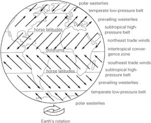 distribusi tekanan dan angin permukaan