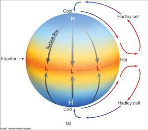 cell hadley teori awal